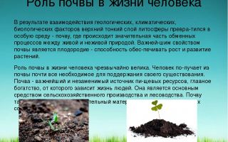 Почва в природе – биология