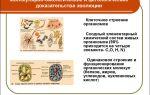 Доказательства эволюции – биология