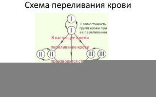 Свертывание крови. переливание крови. группы крови – биология