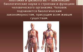 Клеточная теория – биология