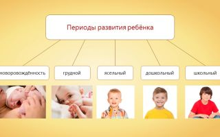 Рост и развитие ребенка после рождения – биология