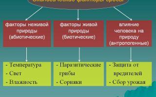 Экологические факторы – биология