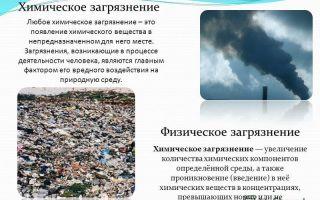 Химическое загрязнение окружающей среды – биология