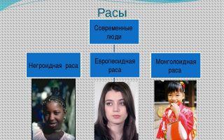 Особенности и единство современных рас человека – биология