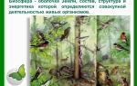 Биосфера как глобальная экосистема – биология
