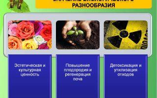 Значение биологических видов – биология