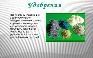 Удобрение почвы – биология