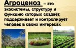 Агробиоценозы – биология