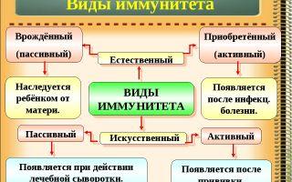 Иммунитет. нарушения иммунной системы человека. вакцинация – биология