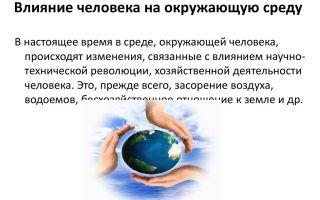 Влияние современного человека на окружающую среду – биология