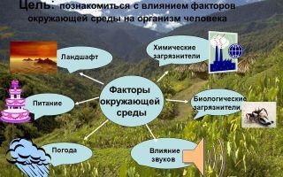 Окружающая среда и здоровье человека – биология