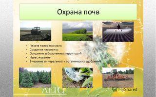 Охрана почвы – биология
