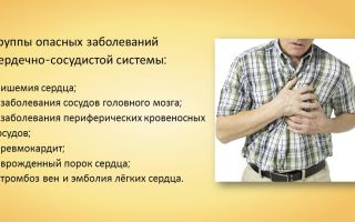Сердечно-сосудистые заболевания. первая помощь при кровотечении – биология