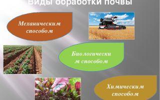 Обработка почвы – биология