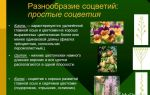 Многообразие цветков. соцветия – биология