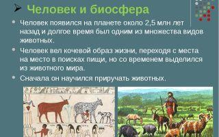 Человек и биосфера – биология