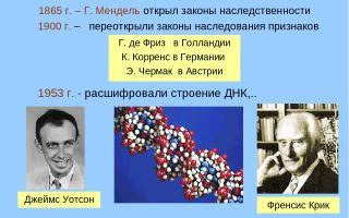Круговорот веществ – биология